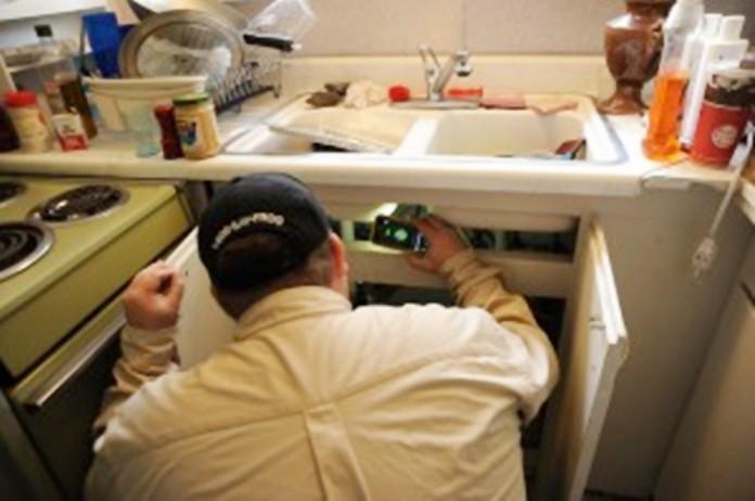 controlar-plagas-en-casa-evita-enfermedades-696x462